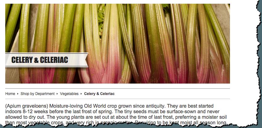 red celery