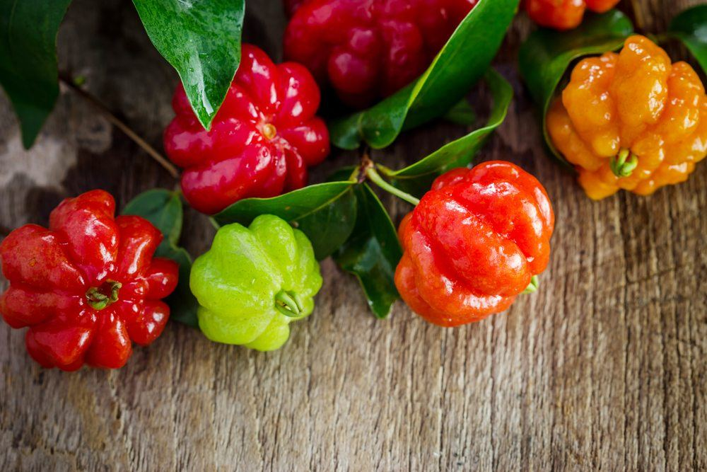 Pitanga AKA Surinam Cherry