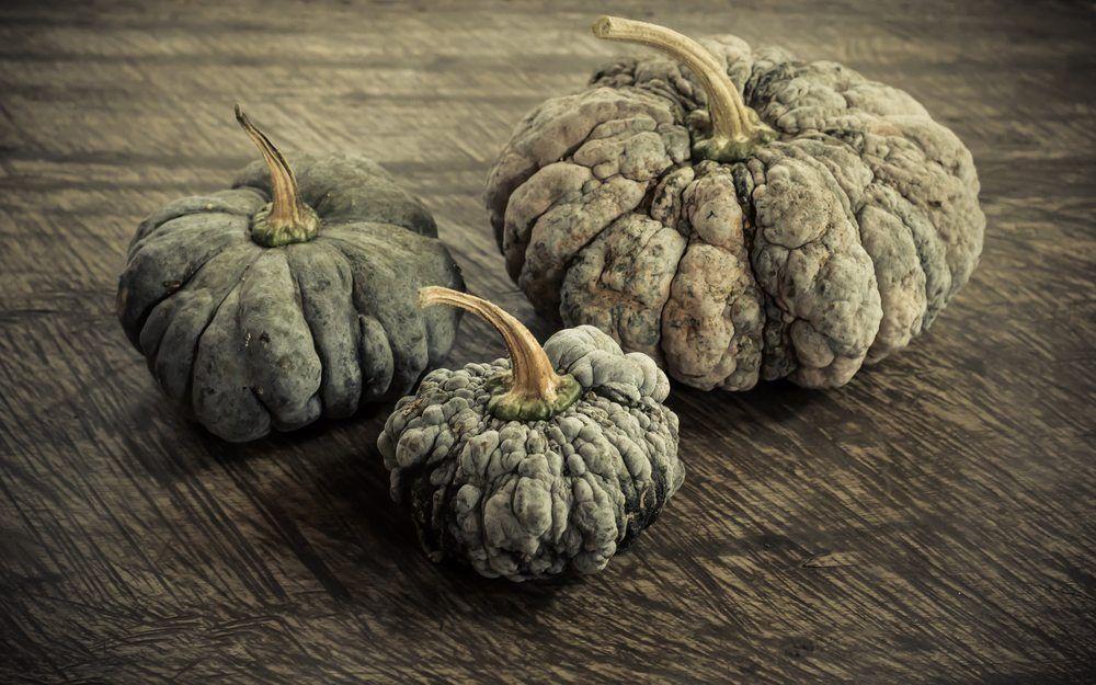 heirloom pumpkin