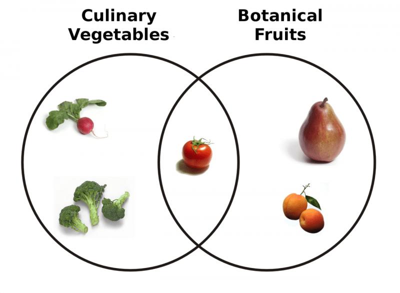 fruit vegetable venn diagram