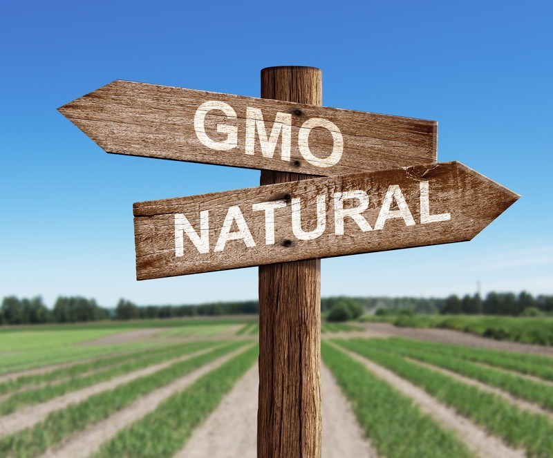 GMO and natural fields