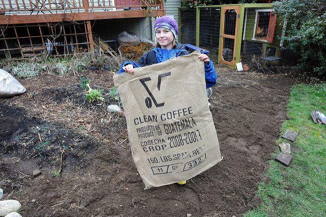 coffee mulch
