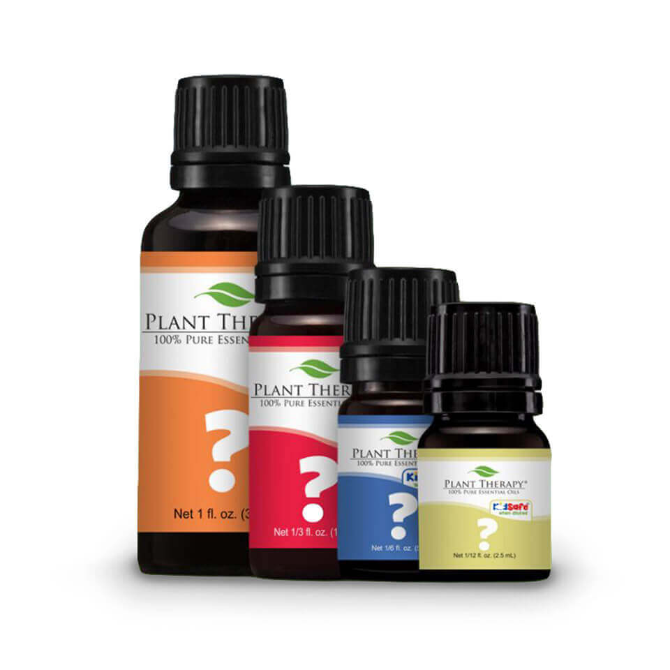 4 bottles of Essential Oils descending from largest in the back to smallest in the front with different colored labels, orange, red, blue, and yellow