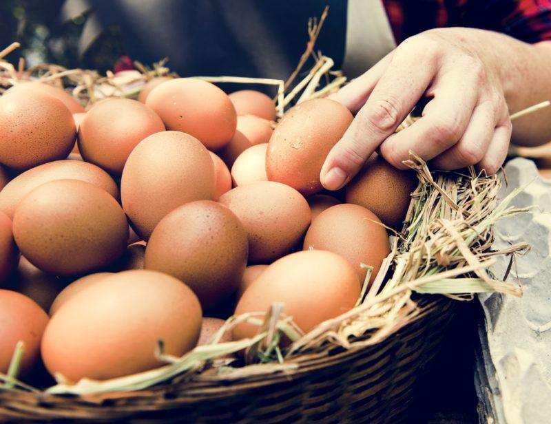 A basket of eggs with someone's hand