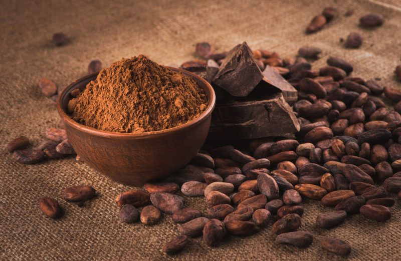 A small brown bowl of cocoa, next to dark chocolate and cocoa beans