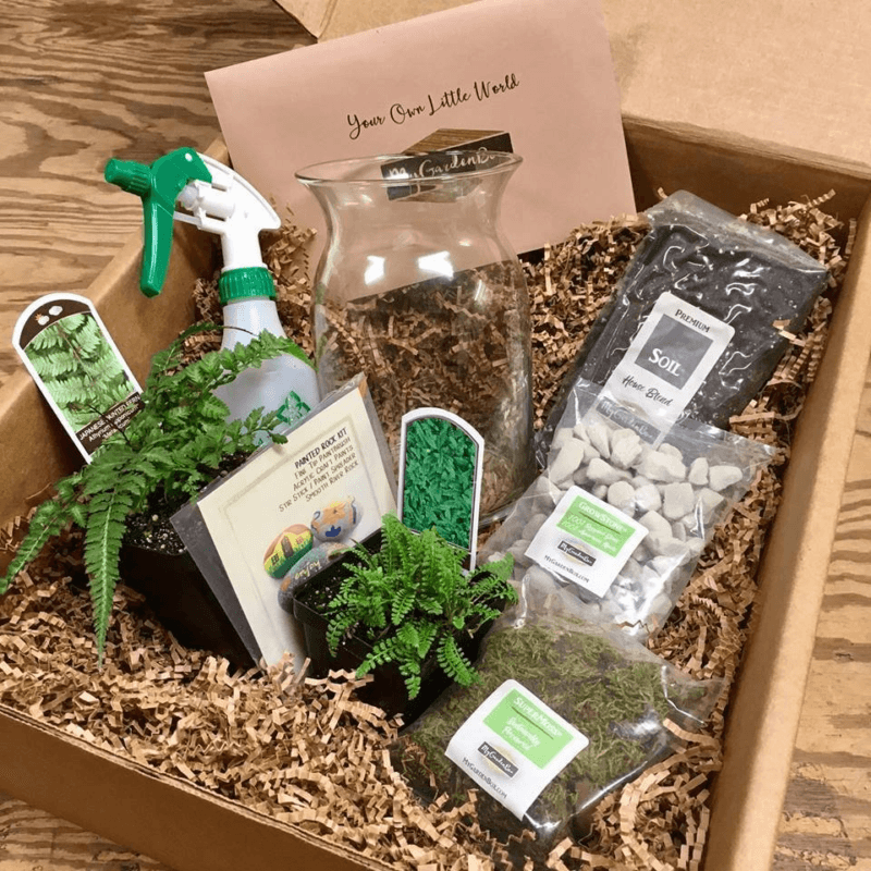 A box from My Garden Box showing various garden tools and plants in straw