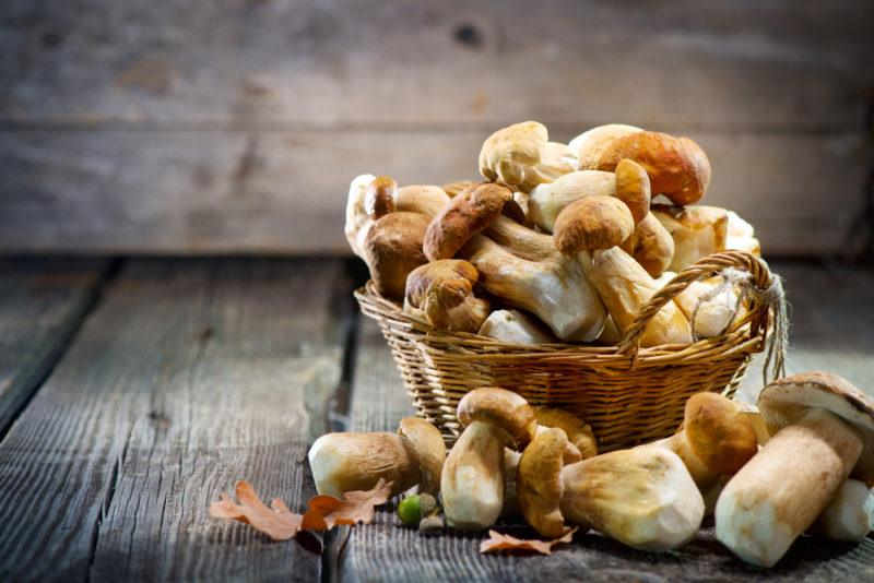 A wicker basket or bucket that contains a selection of mushrooms