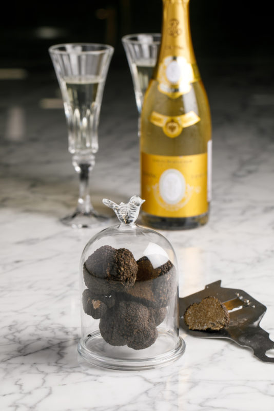 Two glasses of champagne, a bottle of champagne and black truffles in a glass dome