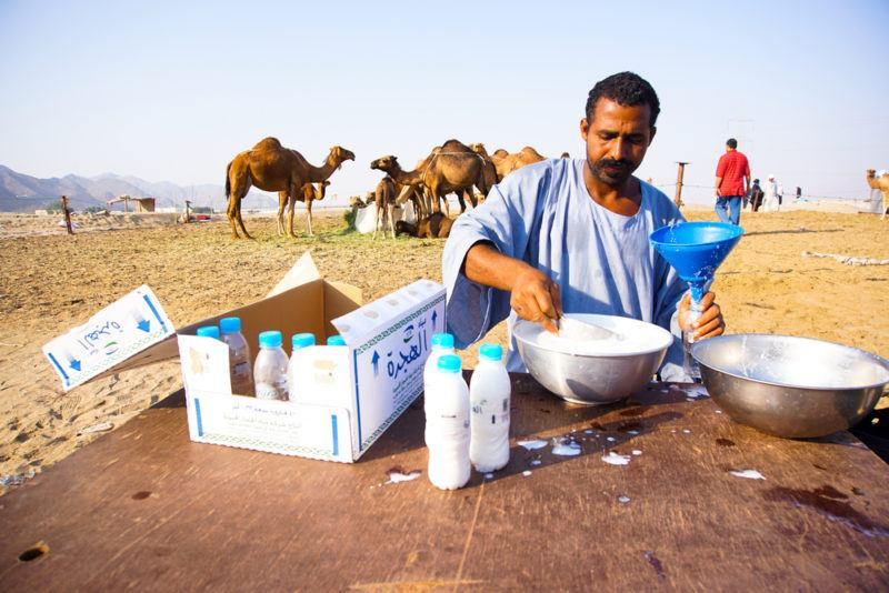 A man in a desert selling camel milk with camels in the background