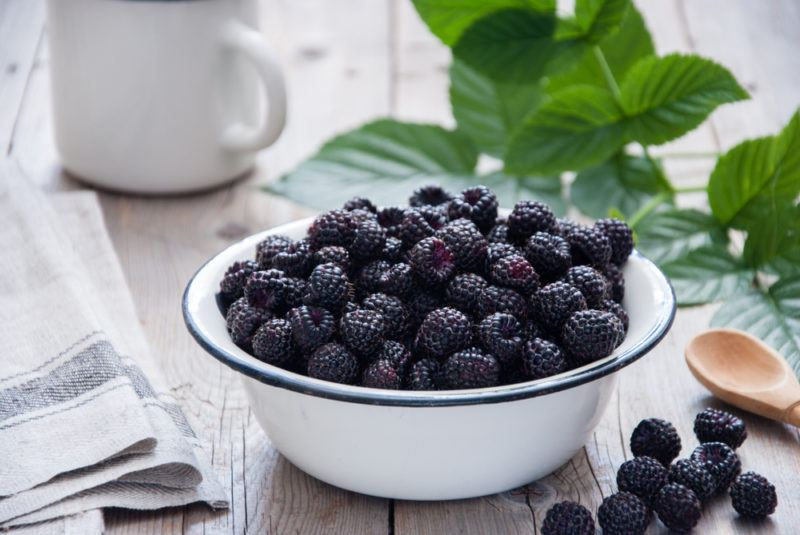 A white enamal bowl of black raspberries with leaves, a jug, a spoon, napkins, and more black raspberries on the table