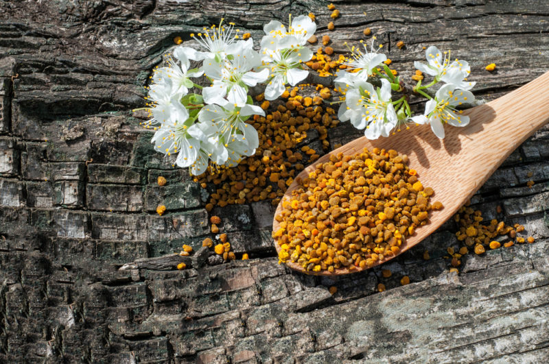 A wooden spoon of bee pollen on a wooden table or stump with flowers