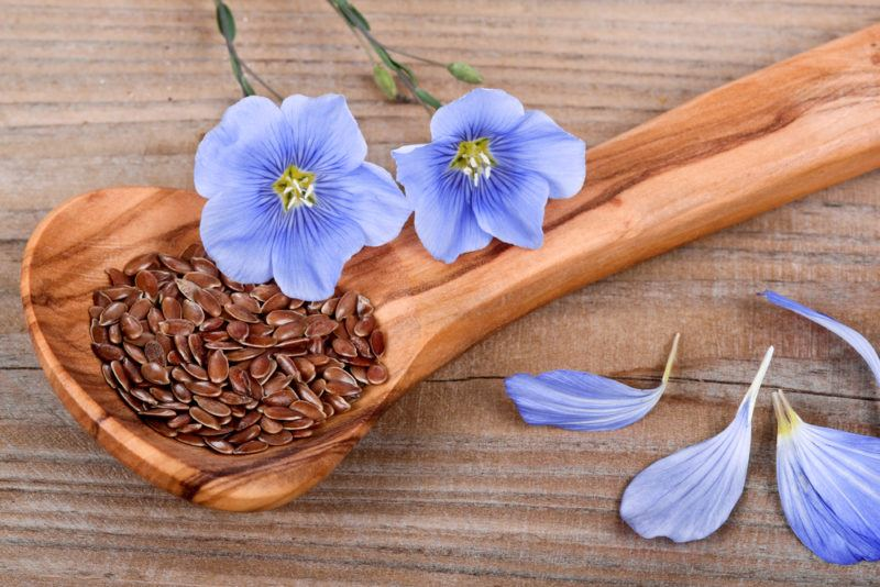 A wooden spoon with flax seeds and light purple flowers