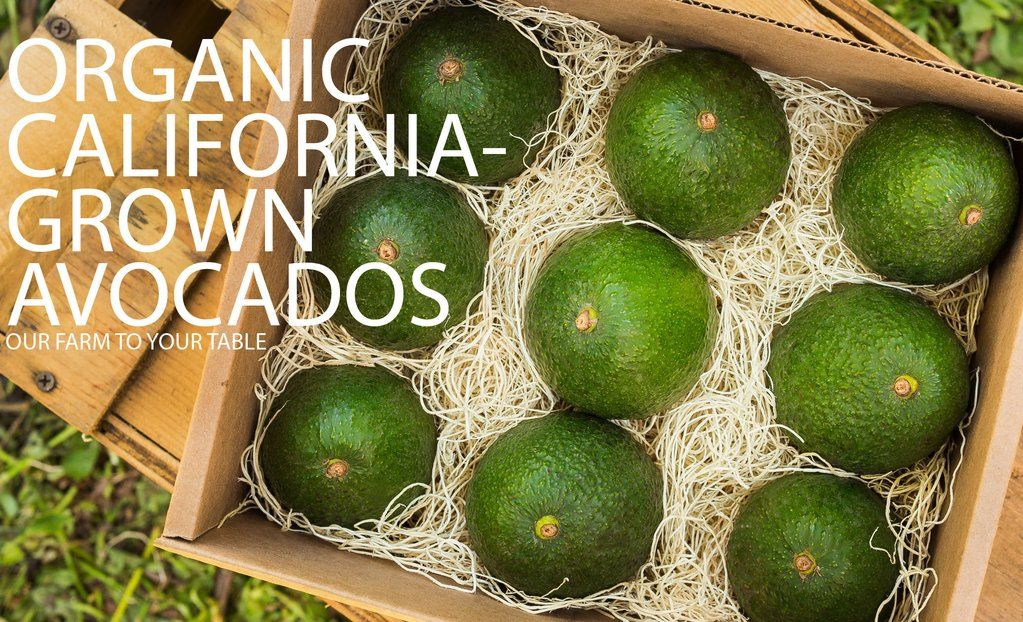 """Cardboard box with 9 avocados, packed in straw like packing sitting on a wood crate outside.  The upper corner has white font that says """"Organic California- Grown Avocados.  Our Farm to your Table"""""""