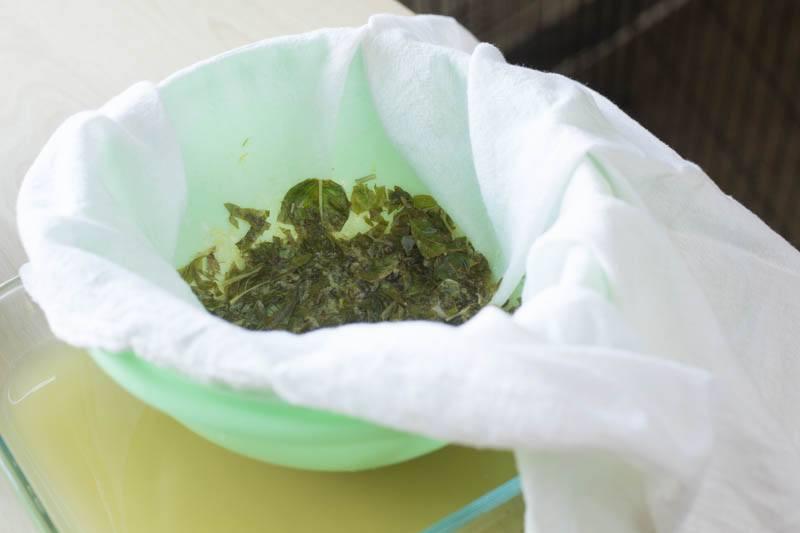 basil-gin-granita-strainer-flour-sack-towel