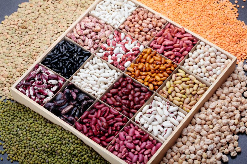 A square tray containing many different types of beans
