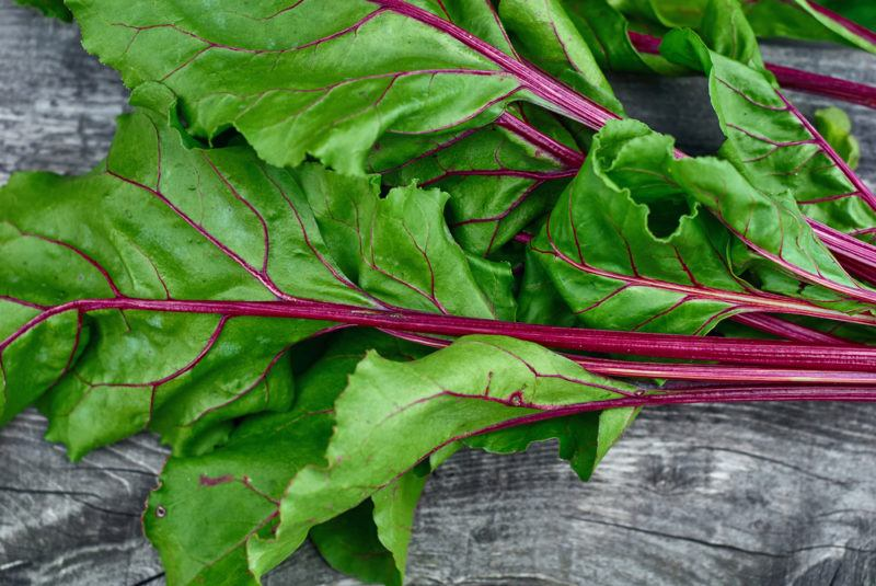 Beet greens on a gray table, showing bright green and red