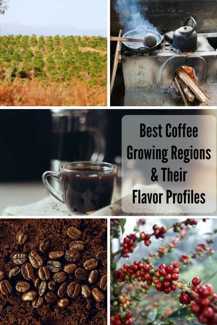best coffee growing regions and flavor profiles on foodfornet.com