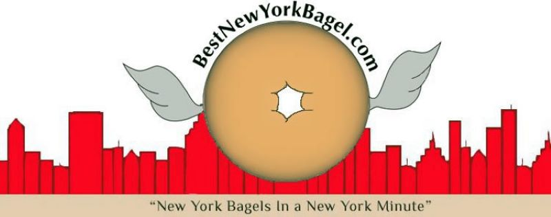 """Background is a drawing of the New York skyline in red.  In front of that, is a bagel with wings.  Above the bagel states Best New York Bagel.com and below the skyline on a brown strip in black font states """"New York Bagels in a New York Minute"""""""