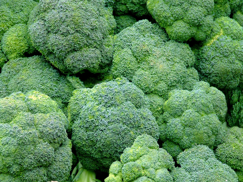 This photo shows an overhead view of several bunches of broccoli.