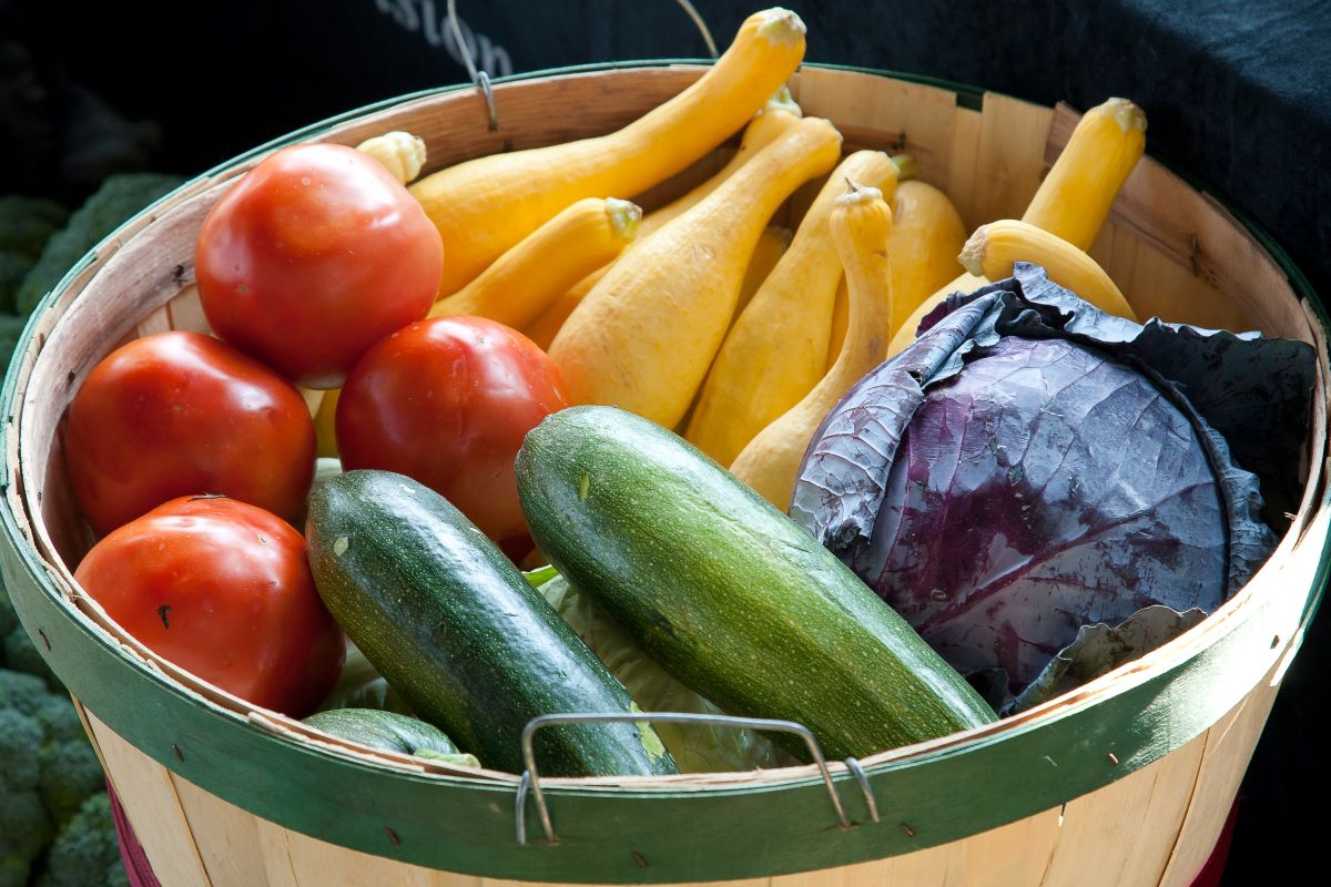 Vegetable of the Month Clubs -Garden basket filled with fresh vegetables including summer squash, zucchini, purple cabbage, and tomatoes
