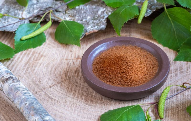 A bowl of chaga powder with leaves from the mushroom lying around