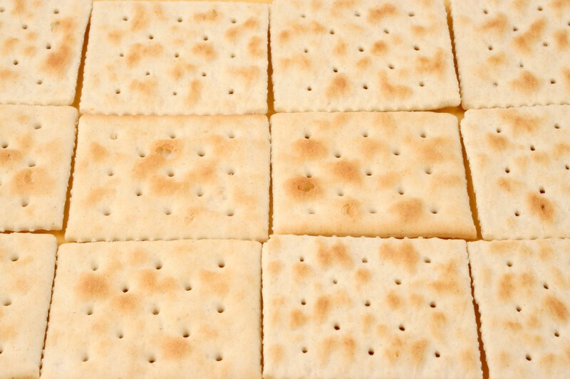 This photo shows three rows of saltine crackers.