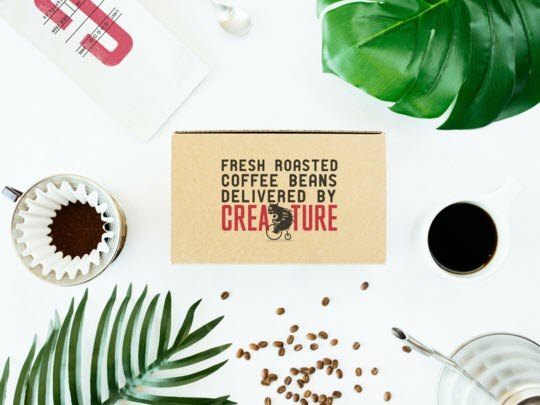 A selection of plants, coffee and a box