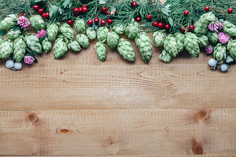 hops on wooden board with red berries for christmas