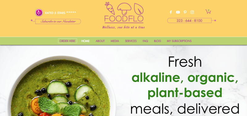 FoodFlo Website Screenshot showing a bowl of green soup, along with information about alkaline and plant-based foods.