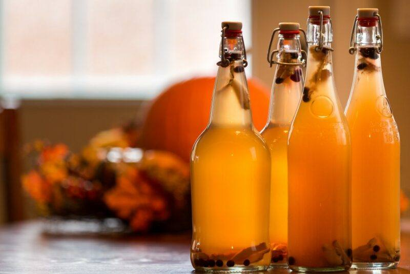 Four glass bottles of kombucha in front of a pumpkin and a window