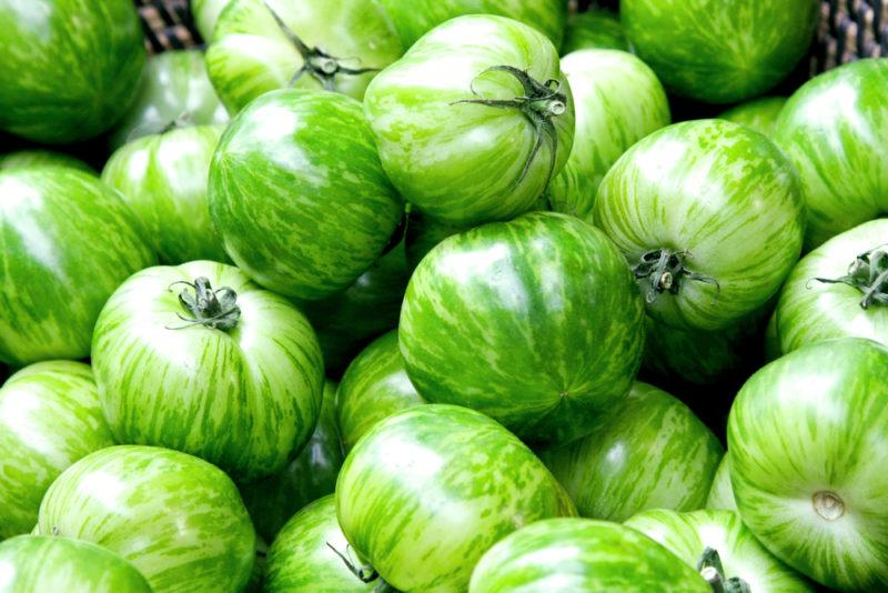A large number of green zebra tomatoes