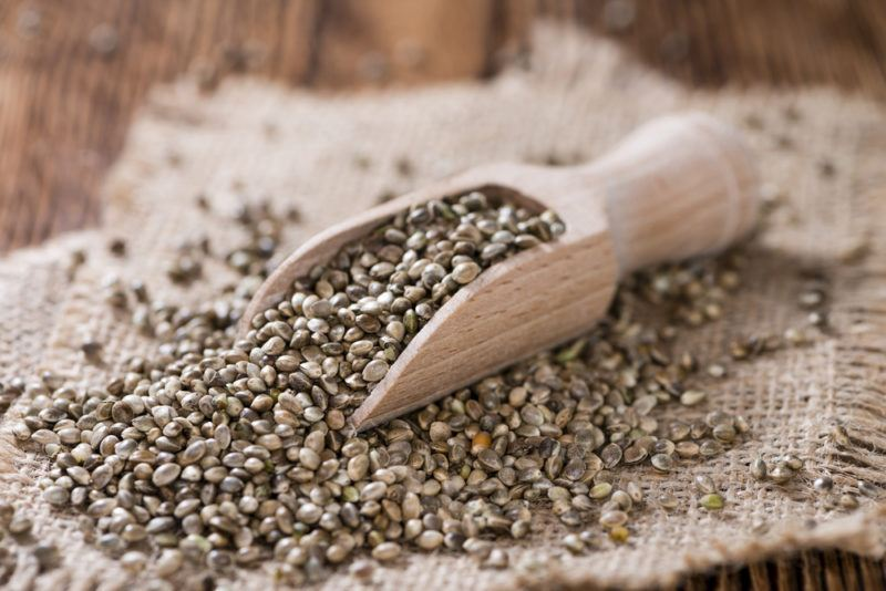 A wooden scoop of hemp seeds on cloth