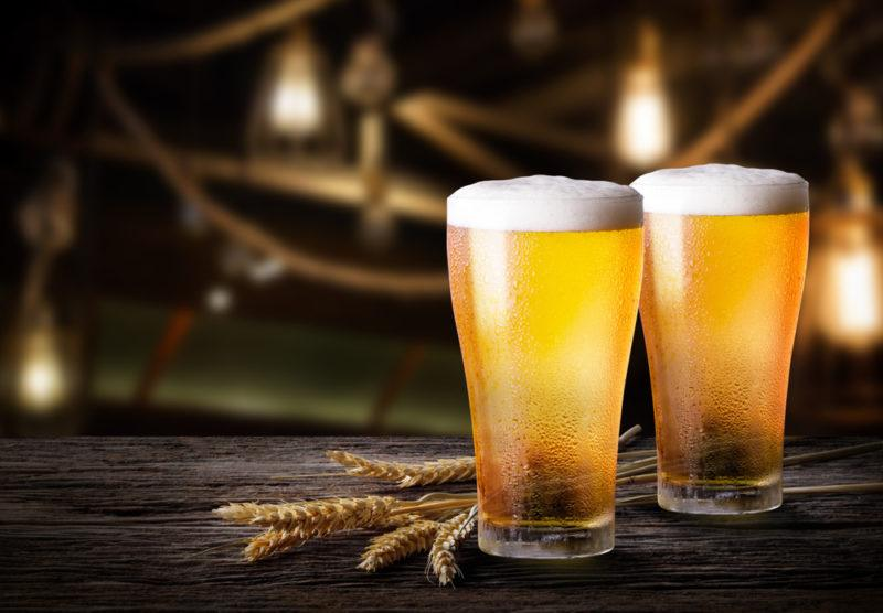 Two mugs of lager beer with wheat on a table