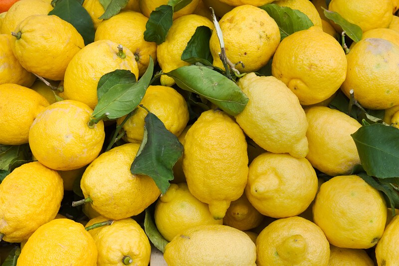 This overhead photo is filled with bright yellow uncut lemons and green leaves.