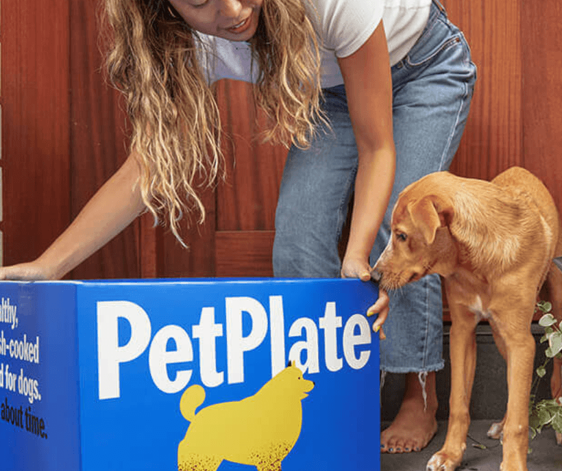 Woman and dog grabbing large blue Pet Plate box off their porch