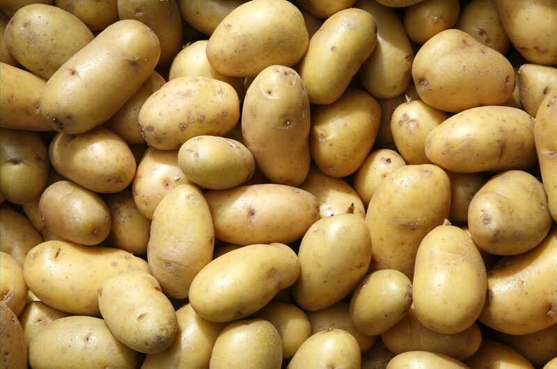 This photo shows an overhead view of several light brown potatoes.
