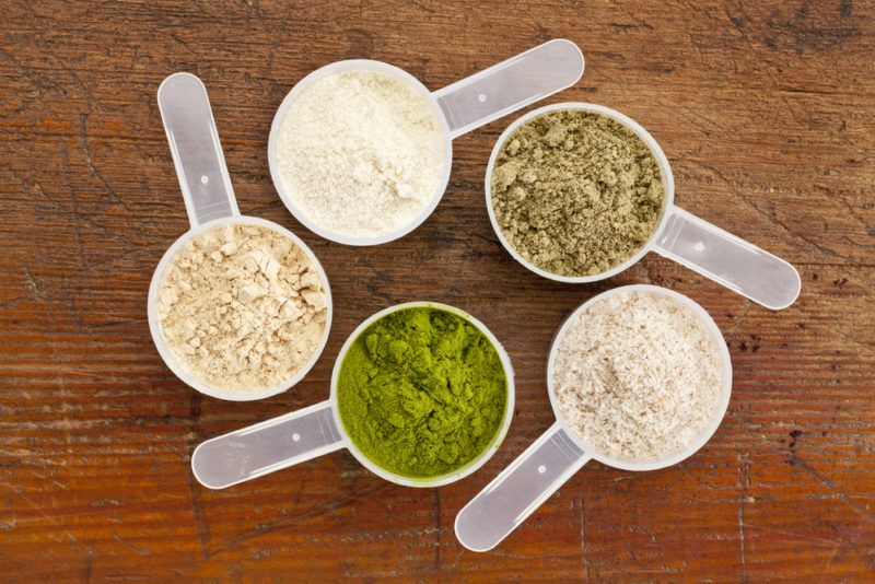 Various types of protein powder including hemp and whey