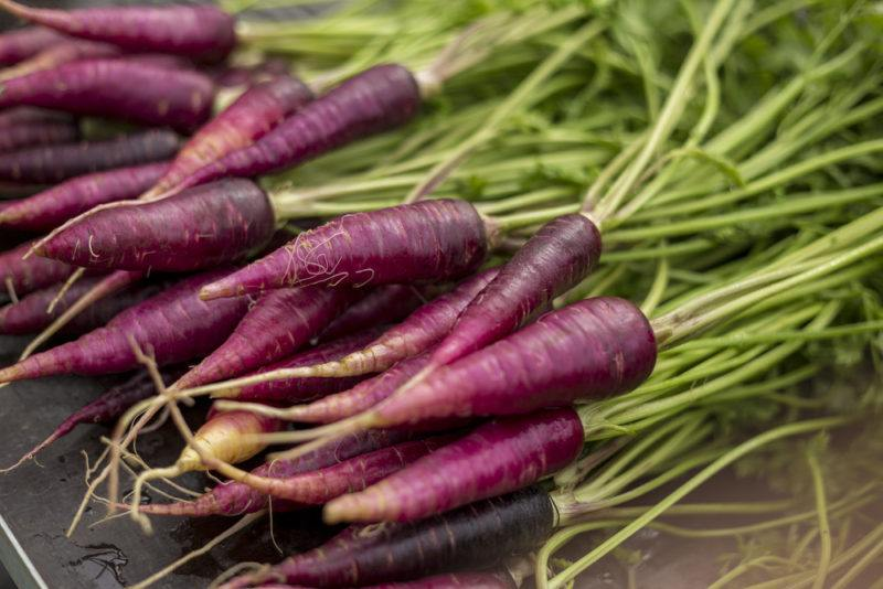 Purple carrots on a table