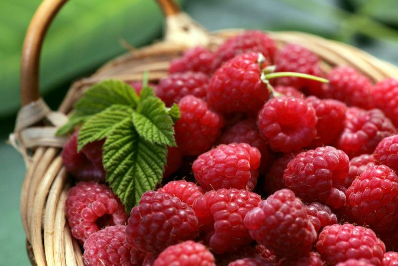 A basket containing raspberries