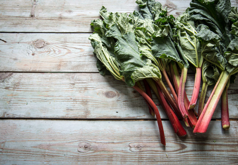 Fresh rhubarb stalks on the right hand side of a wooden deck or table