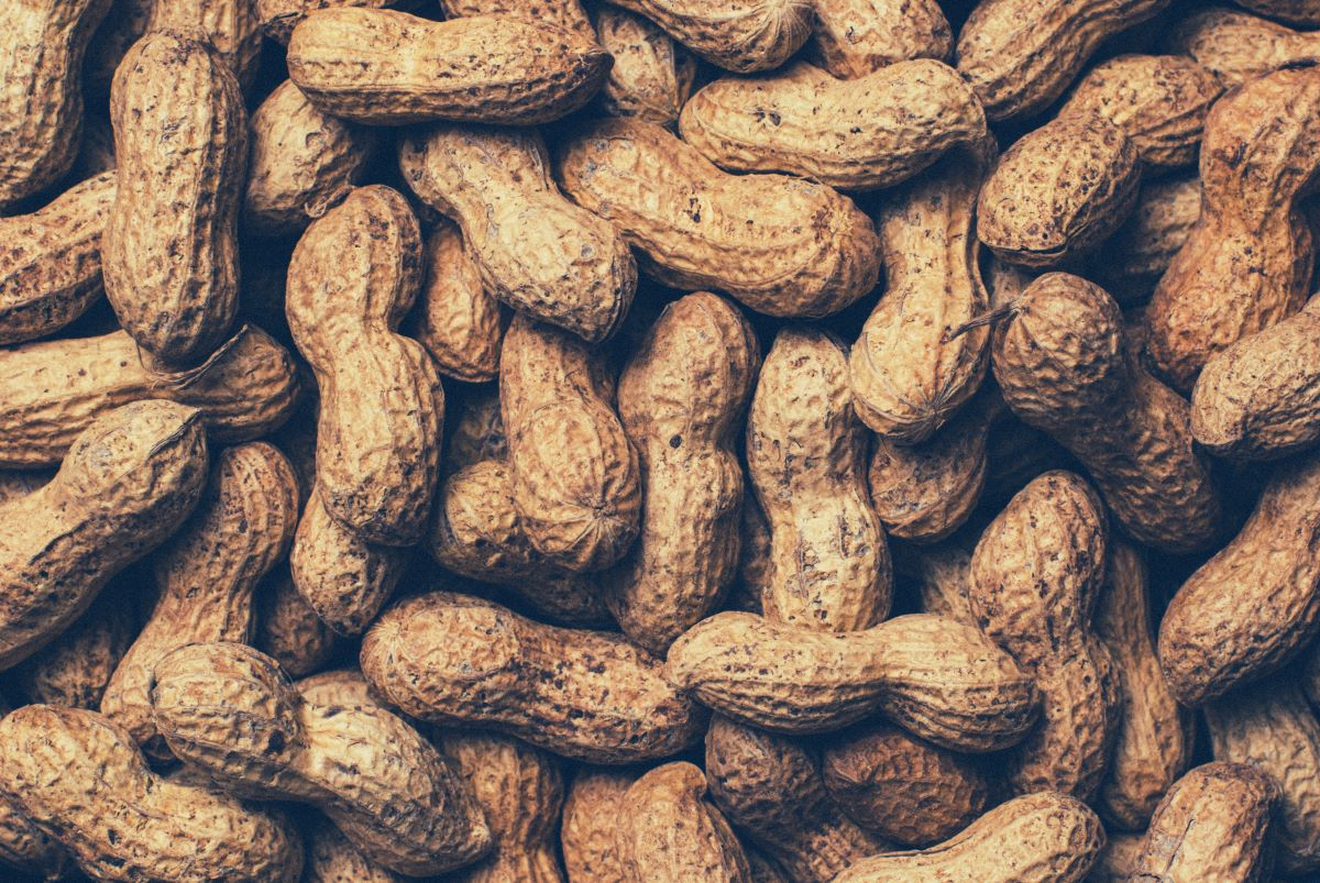 Peanut of the month club - Pile of Shelled Peanuts