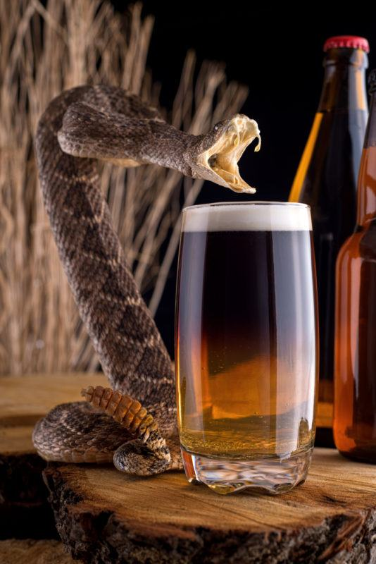 A rising snake in front of a Snakebite cocktail