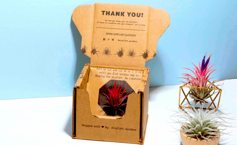 Subscription box from Airplant gardens with a couple of plants next to it