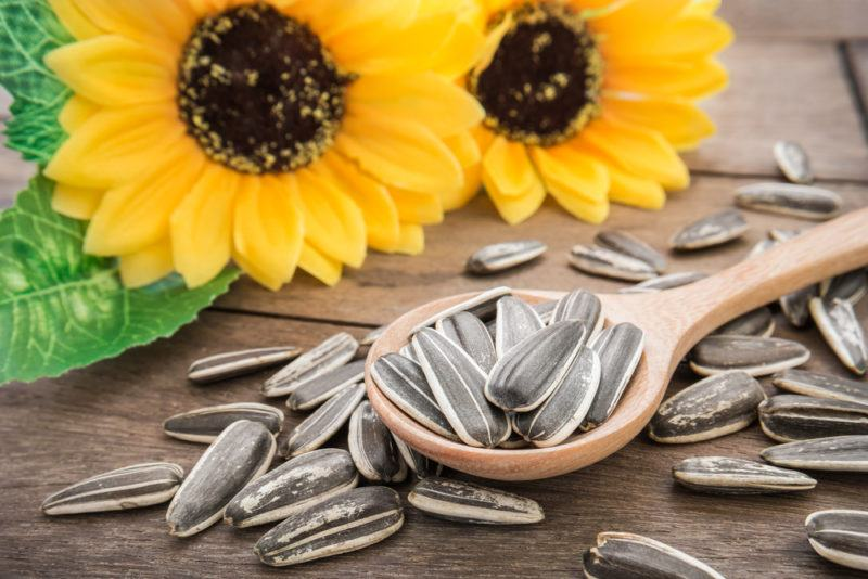 A spoonful of sunflower seeds with sunflowers on a table