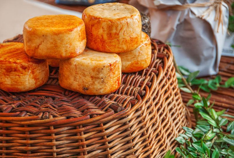 Traditional artisan spain cheese of goat and sheep