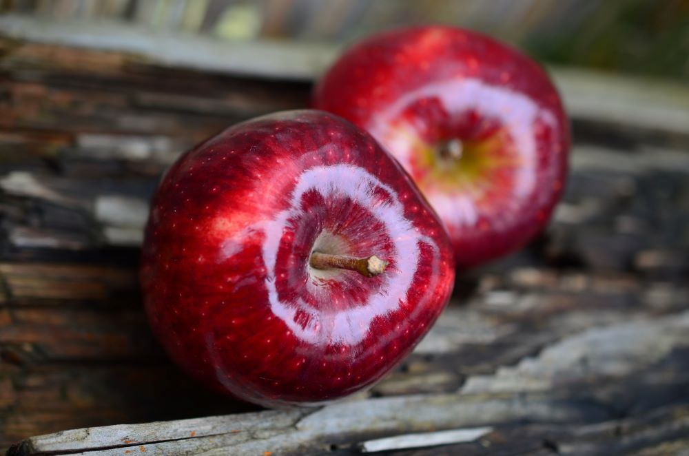 Two Red Delicious apples sitting on a weathered piece of wood.  The front apple is clear and crisp and the second one is slightly tucked behind and a little out of focus