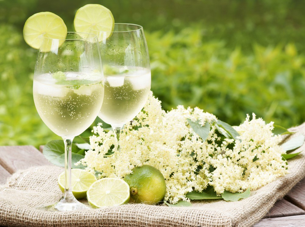 Two glasses of elderflower cocktail, next to elderflowers on some cloth