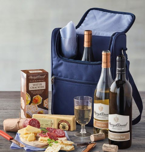 A blue picnic pack on a table with cheese, sausage and wine.