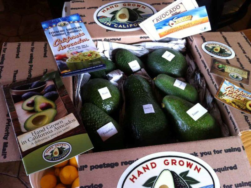 Box with 8 avocados, the center avocado is a jumbo one.  Additionally, there are various pamphlets and stickers shown framing the box