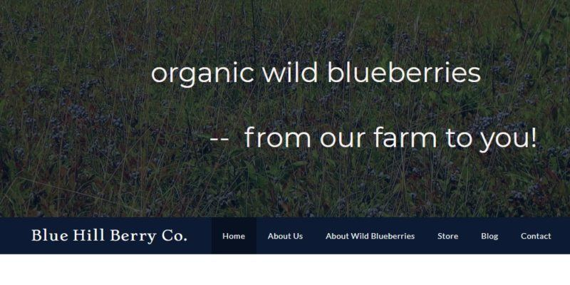 blue hill berry co hom epage